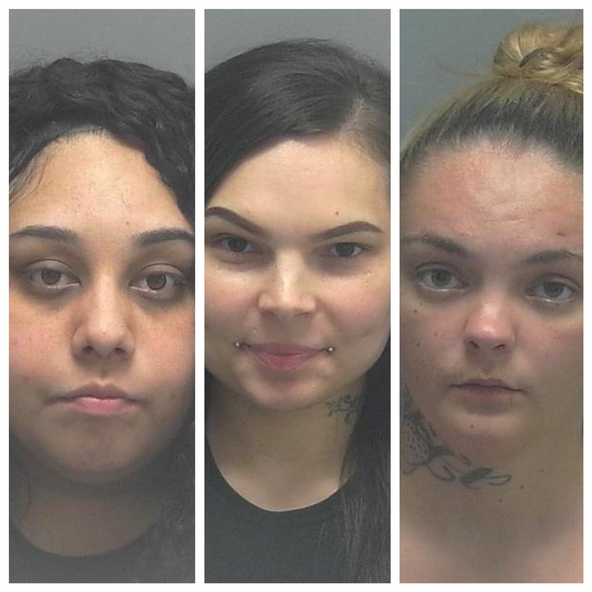 3 Lee County women called 'Felony Lane Gang' arrested in Indiana after high-speed chase