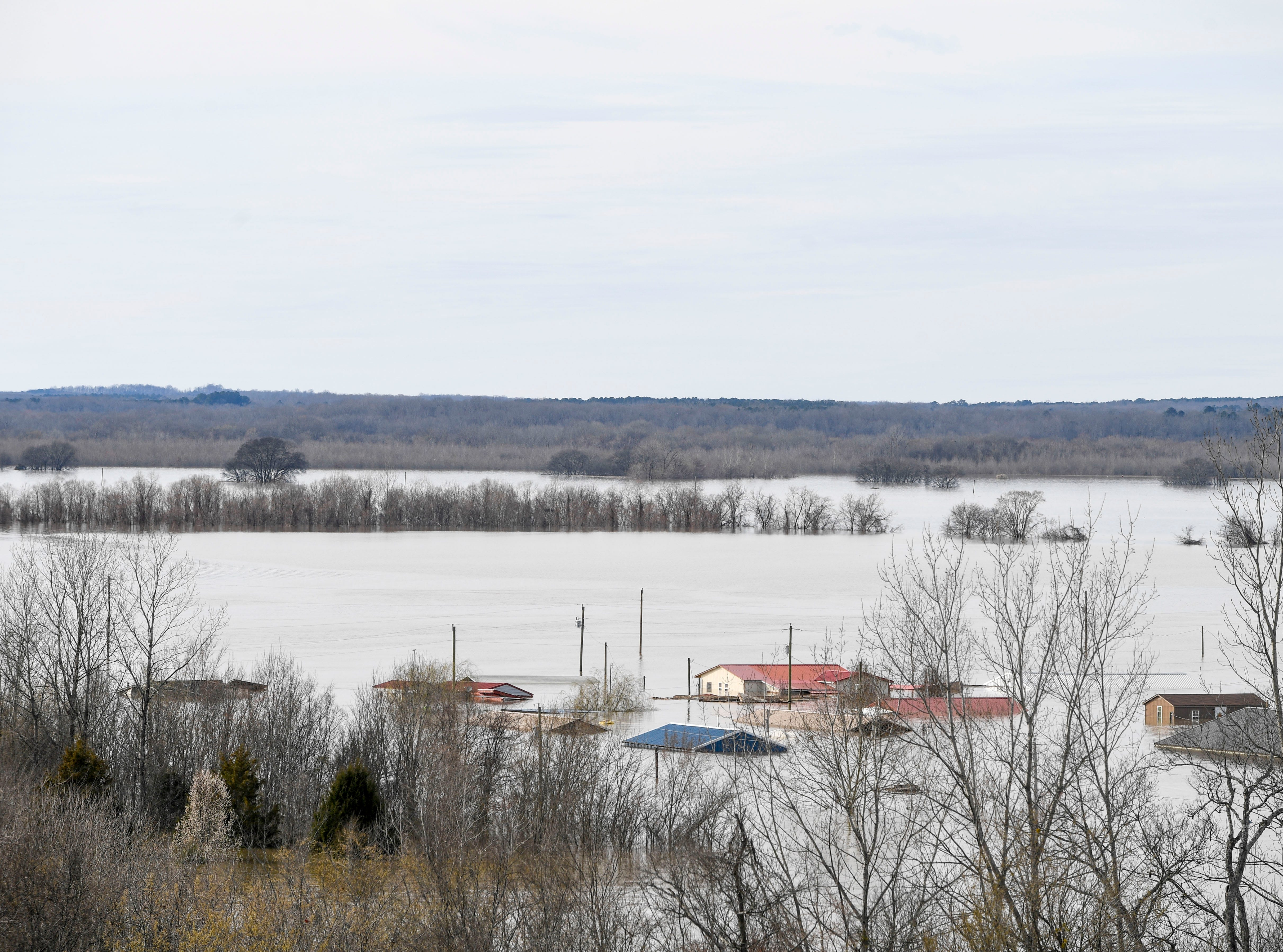 Waters from the Tennessee River flood homes up to their roofs in a neighborhood just off of the road at Tennessee River Bridge, in Savannah, Tenn., on Monday, Feb. 25, 2019.