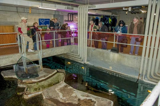 """""""Behind the Scenes Weekend"""" at the Milwaukee County Zoo runs from 10 a.m. to 2:30 p.m. March 9-10."""