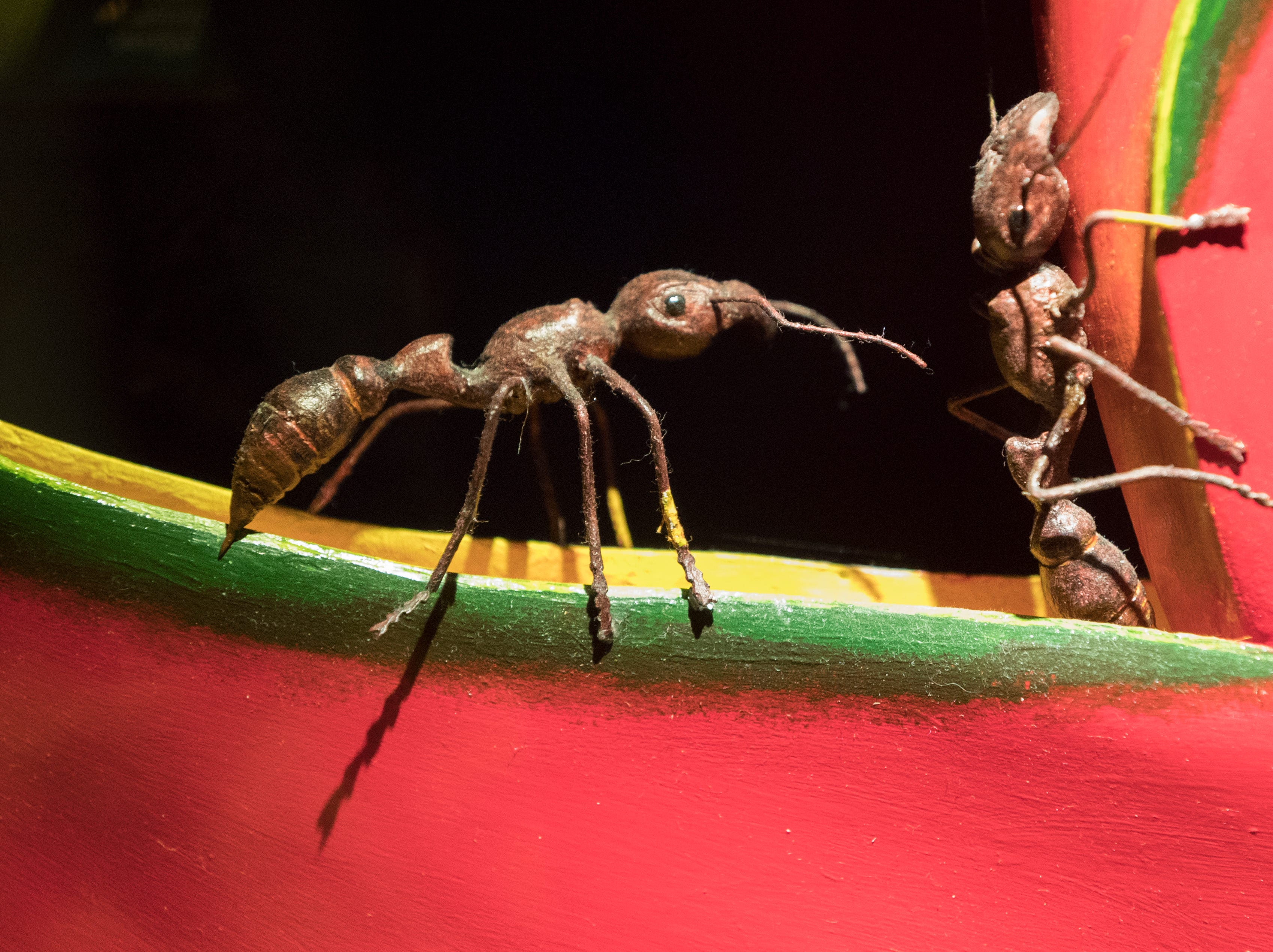 "These models of bullet ants, which produce a powerful neurotoxin, are  part of an exhibit called ""The Power of Poison"" at the Milwaukee Public Museum. The limited-engagement exhibit opens to the public on March 2 and runs through July 7."