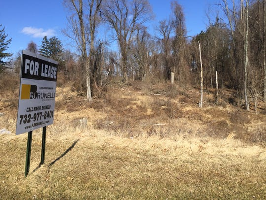 This wooded tract on Hamburg Turnpike in Wayne will be the site of a new strip mall, restaurant and preschool.