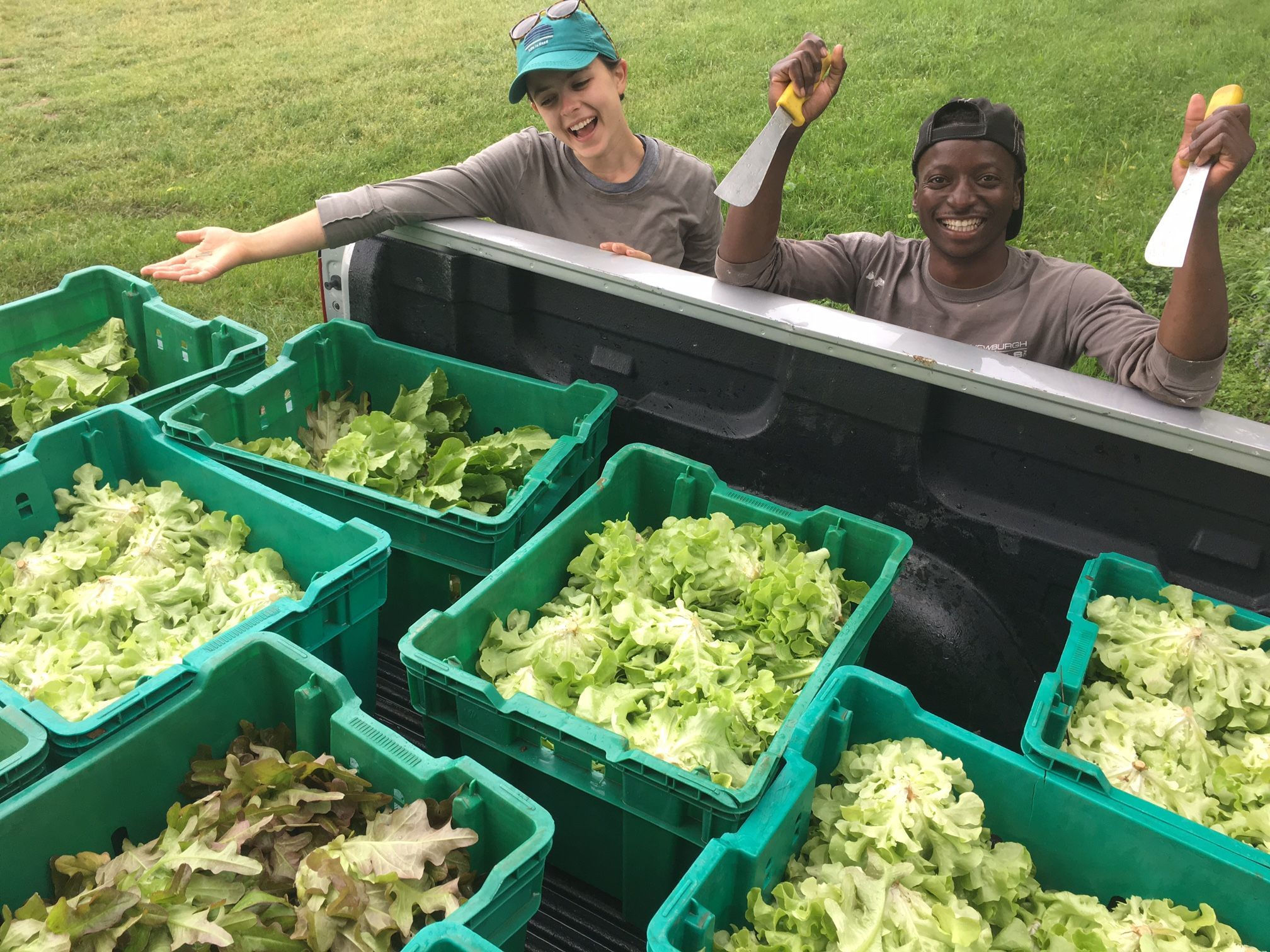 Common Ground Farm apprentices Alexis O'Brien, left, and Kantu Thole are shown during a past season preparing a truck load of lettuce to go to the Beacon schools.
