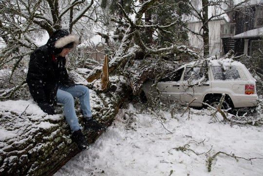 Colin Kearney sits on the tree that fell across his car that he had parked on 12th Street in Eugene, Ore., early Monday, Feb. 25, 2019, after several inches of snow fell in the area.