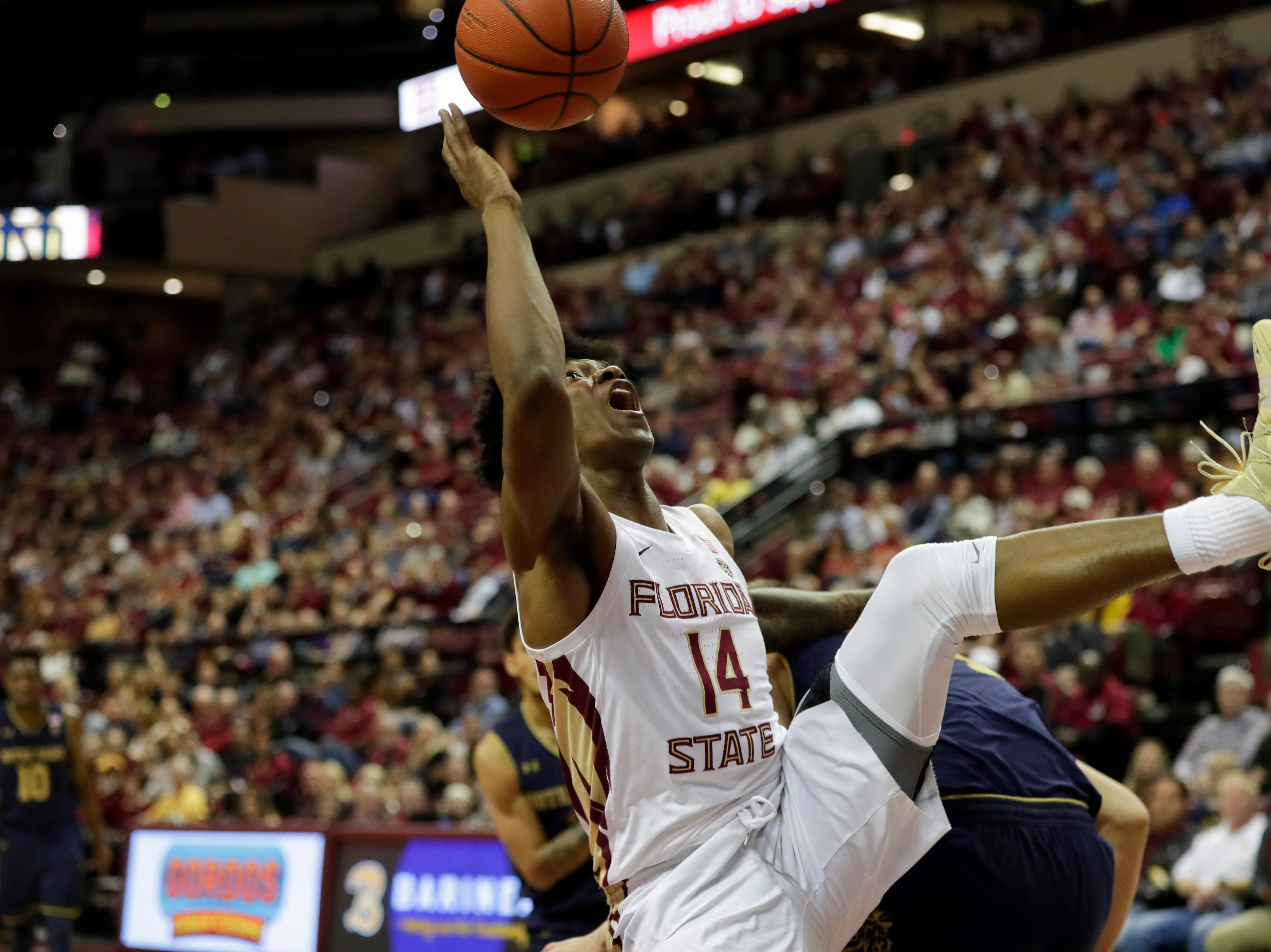 Florida State Seminoles guard Terance Mann (14) comes down on top of a Notre Dame player with a rebound during a game between FSU and Notre Dame at the Donald L. Tucker Civic Center Monday, Feb. 25, 2019.