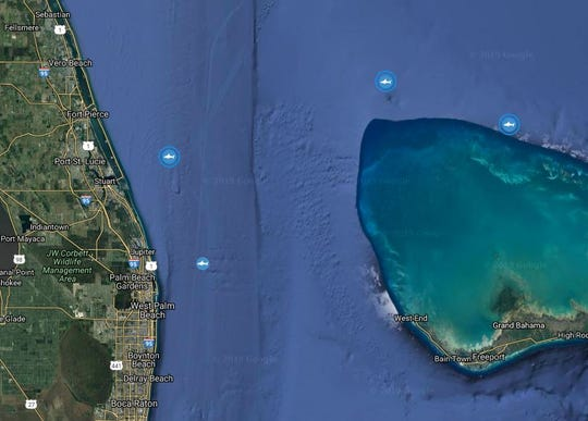 The three blue circles around Miss May (left), Katharine (middle) and Miss Costa (right) show where the white sharks pinged this week.
