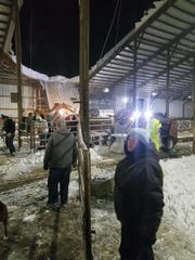 Despite blizzard conditions, volunteers arrived to help Amy and Sander Penterman at their Dutch Dairy farm after snow collapsed a roof over their cows on Feb. 24.