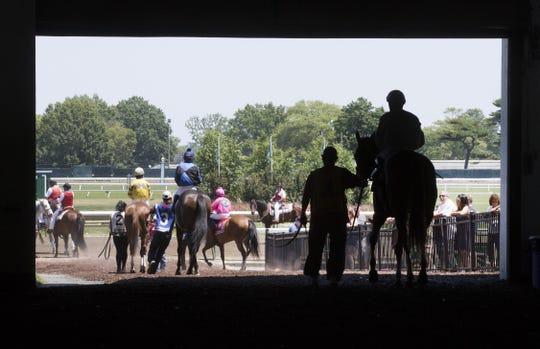 Horses head for the track before a race at Monmouth Park on Father's Day in 2016.