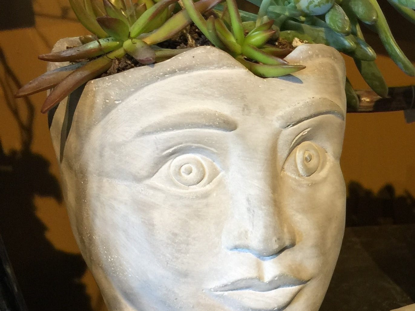 """Succulents create sculptural """"hair"""" in this head planter at Blumz by JRDesigns in Ferndale."""