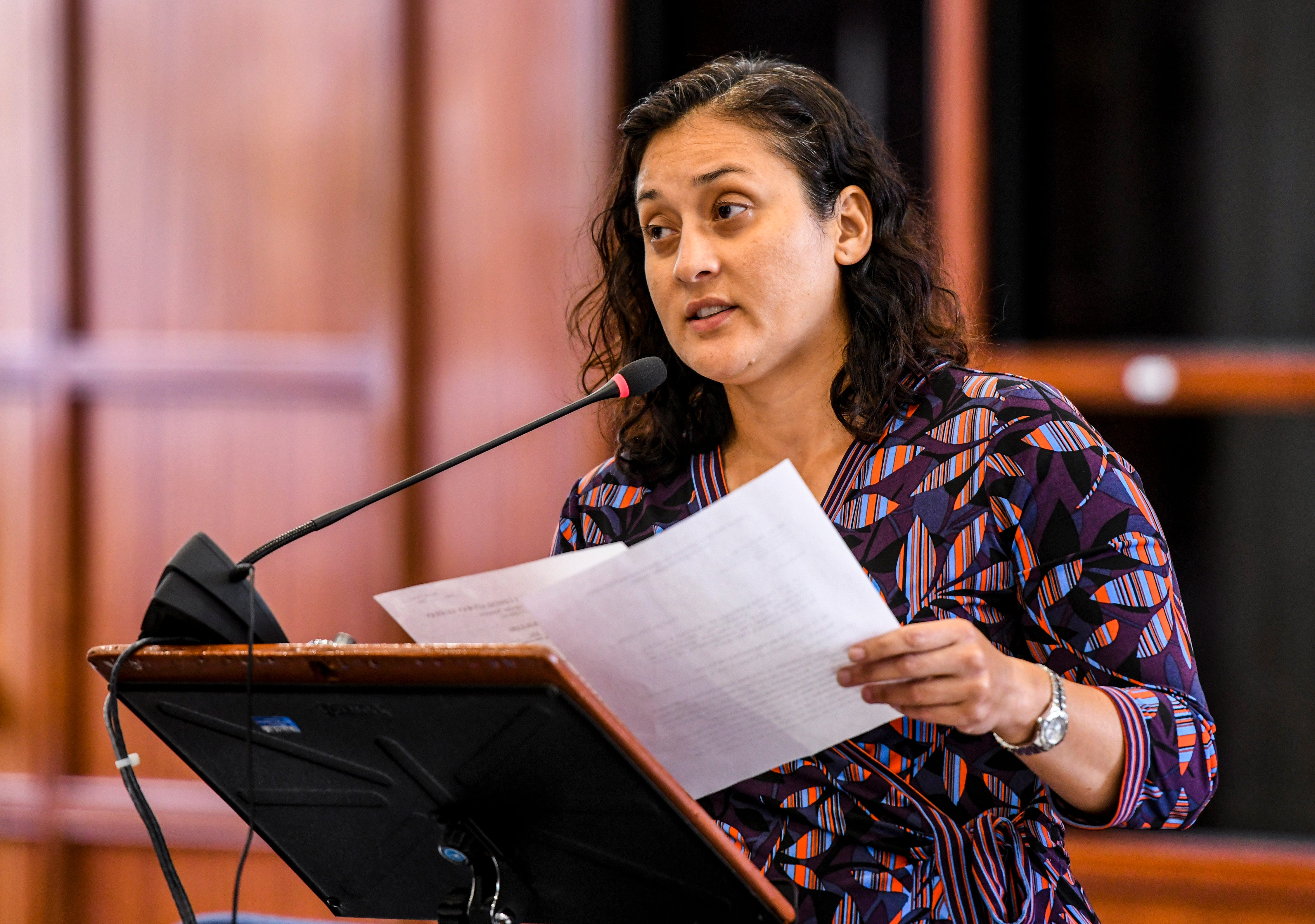 Vice Speaker Telena Nelson comment on Bill 30-35 during session at the Guam Legislature on Tuesday, Feb. 26, 2019.