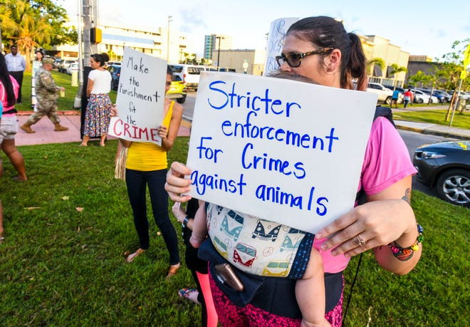 Protesters, gathers along Marine Corps Drive in Hagåtña on Wednesday, Feb. 27, 2019, to express their opposition to the dismissal of felony charges against Gerald Wayne Cruz II, by Judge Michael Bordallo, in regards to the shooting of animals in Yigo last year. Pugua, a pet dog owned by Alexie and Nathan Mapson, was found fatally shot on Sept. 27, 2018, in a Yigo family's carport. Cruz was charged in the relation to the dog's death and may be linked to harming other animals, according to PDN files.