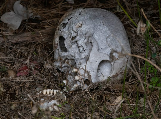 A skull visible in a damaged grave at Westcott Cemetery in Montgomery, Ala. on Wednesday February 27, 2019.