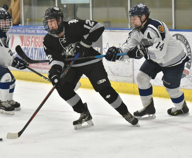 A South Lyon Lion tries to slow down puck-carrier Plymouth's Brayden Goebel.