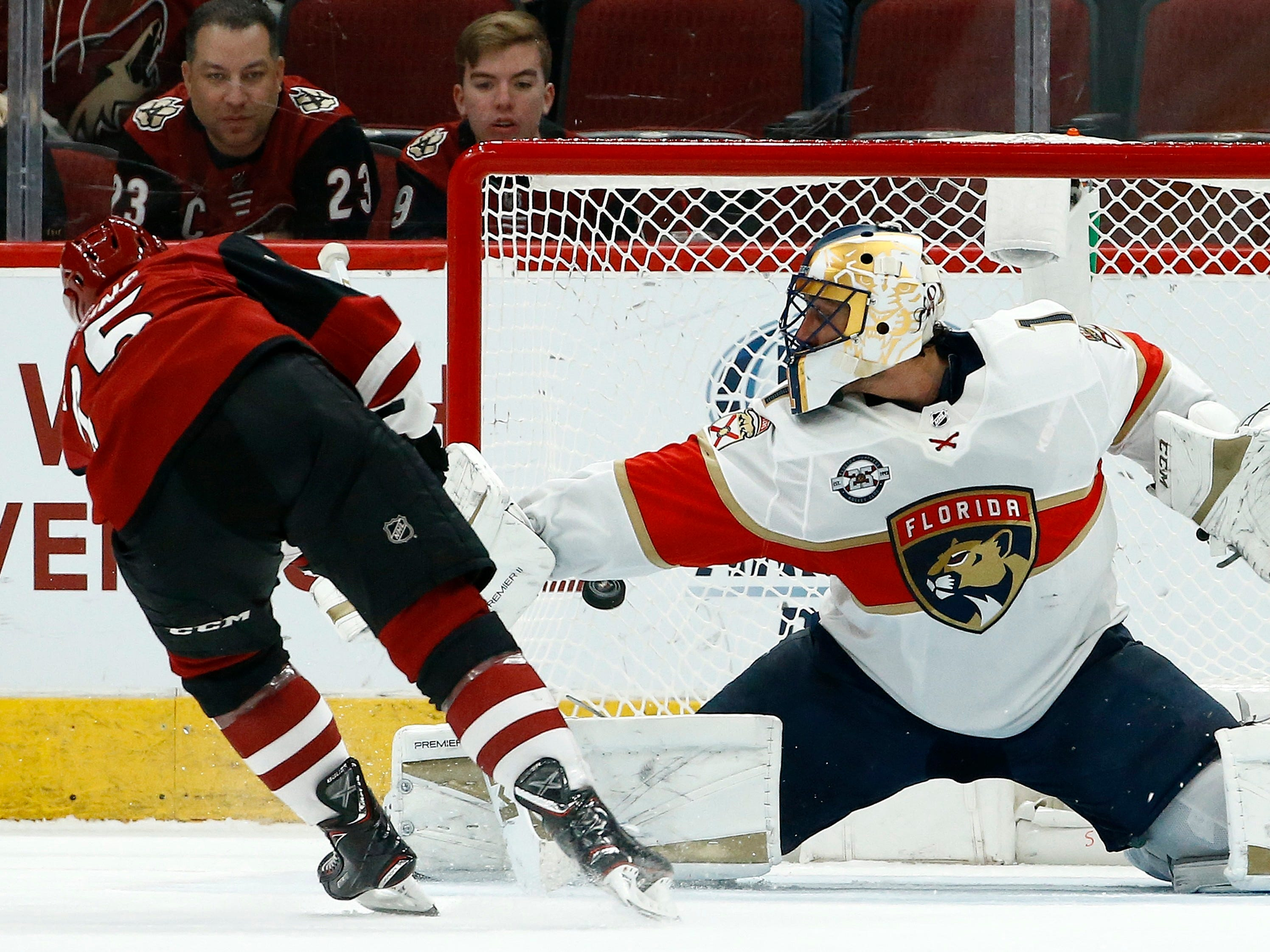 Arizona Coyotes center Nick Cousins, left, scores a goal against Florida Panthers goaltender Roberto Luongo during the shootout in an NHL hockey game Tuesday, Feb. 26, 2019, in Glendale, Ariz. The Coyotes won 4-3.
