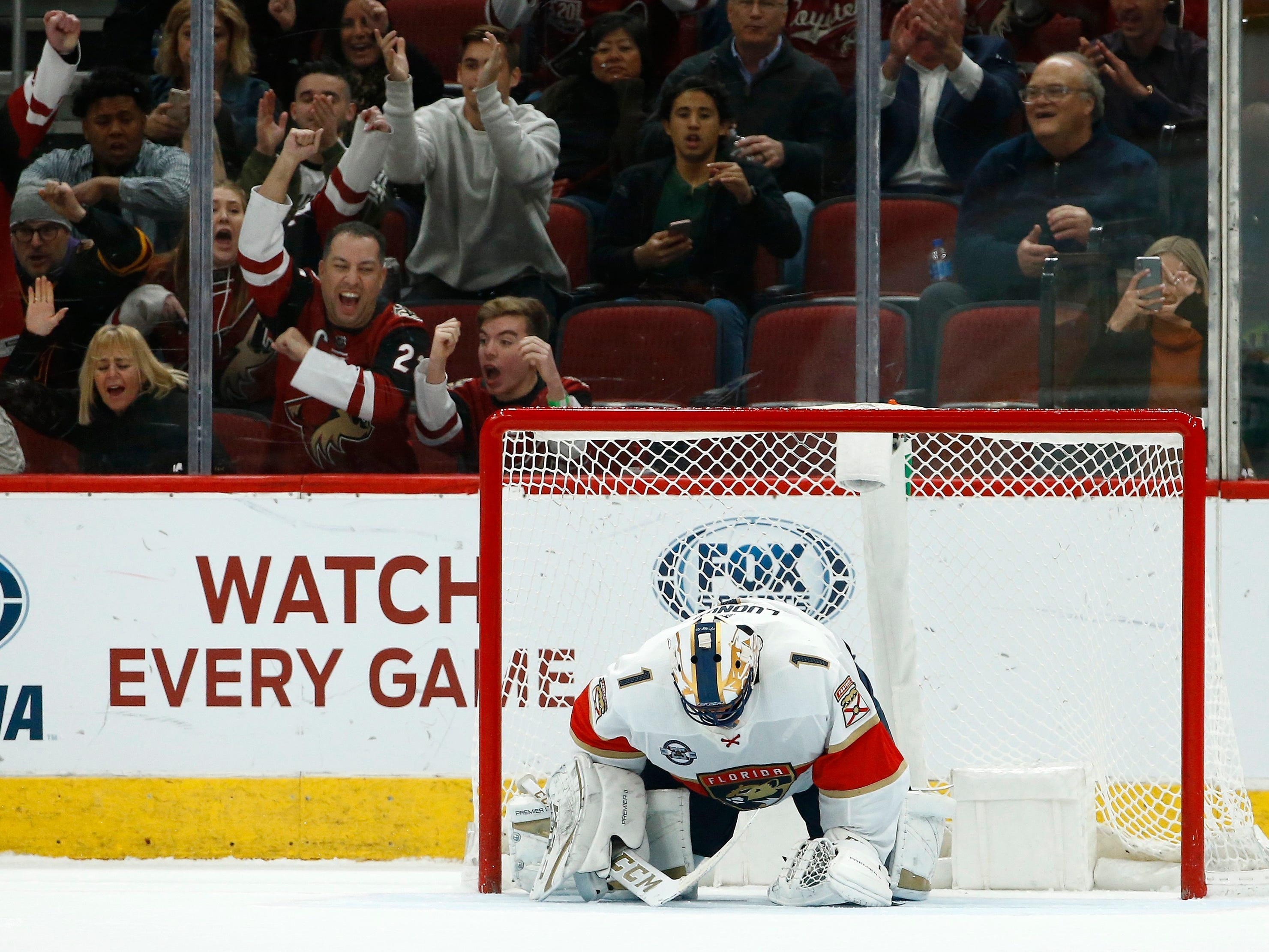 Arizona Coyotes fans cheer a goal by Coyotes' Nick Cousins against Florida Panthers goaltender Roberto Luongo (1) during the shootout jn an NHL hockey game Tuesday, Feb. 26, 2019, in Glendale, Ariz. The Coyotes won 4-3.