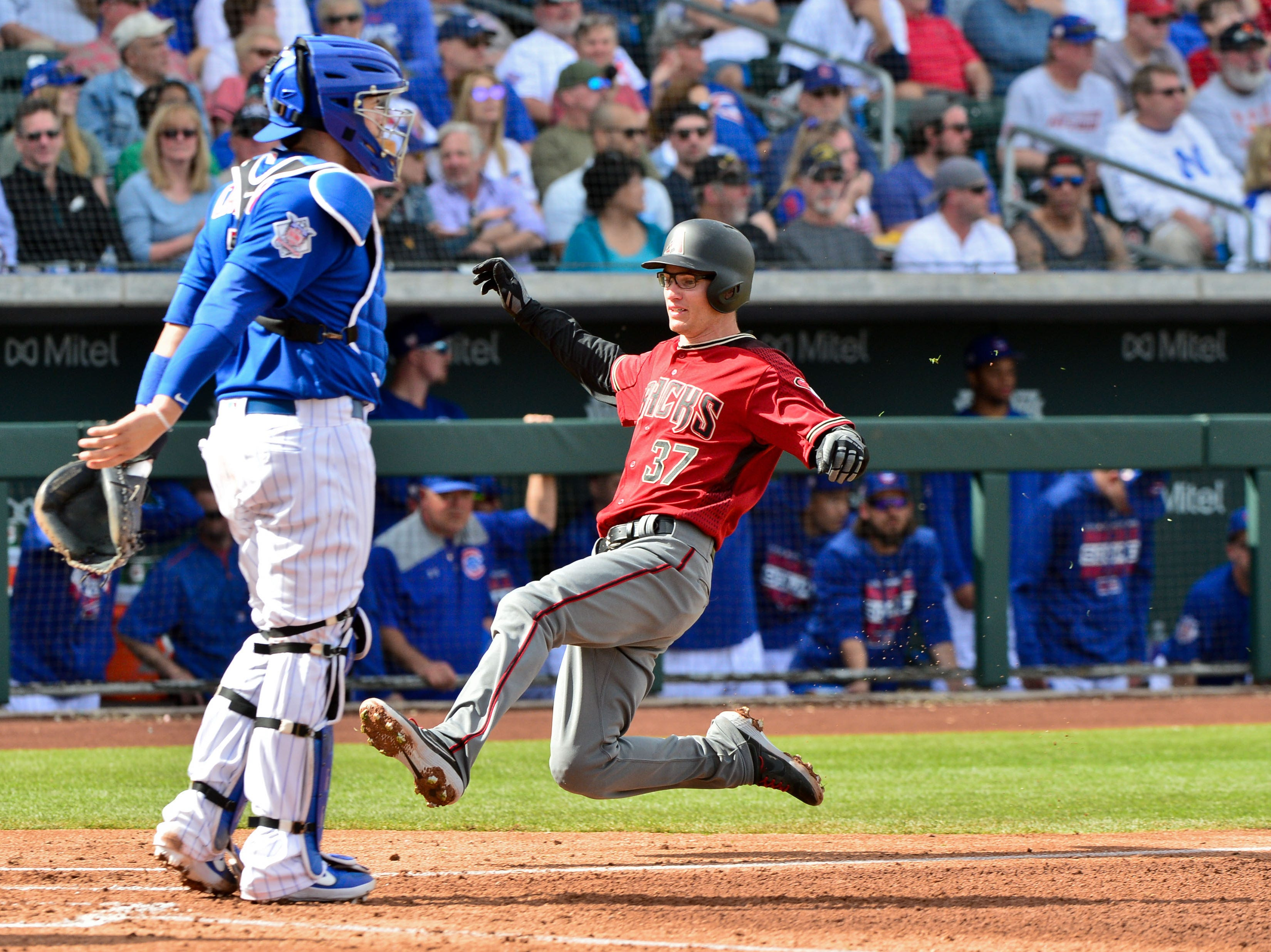 Feb 26, 2019: Arizona Diamondbacks catcher Chris Stewart (37) scores as Chicago Cubs catcher Victor Caratini (7) looks on during the second inning at Sloan Park.