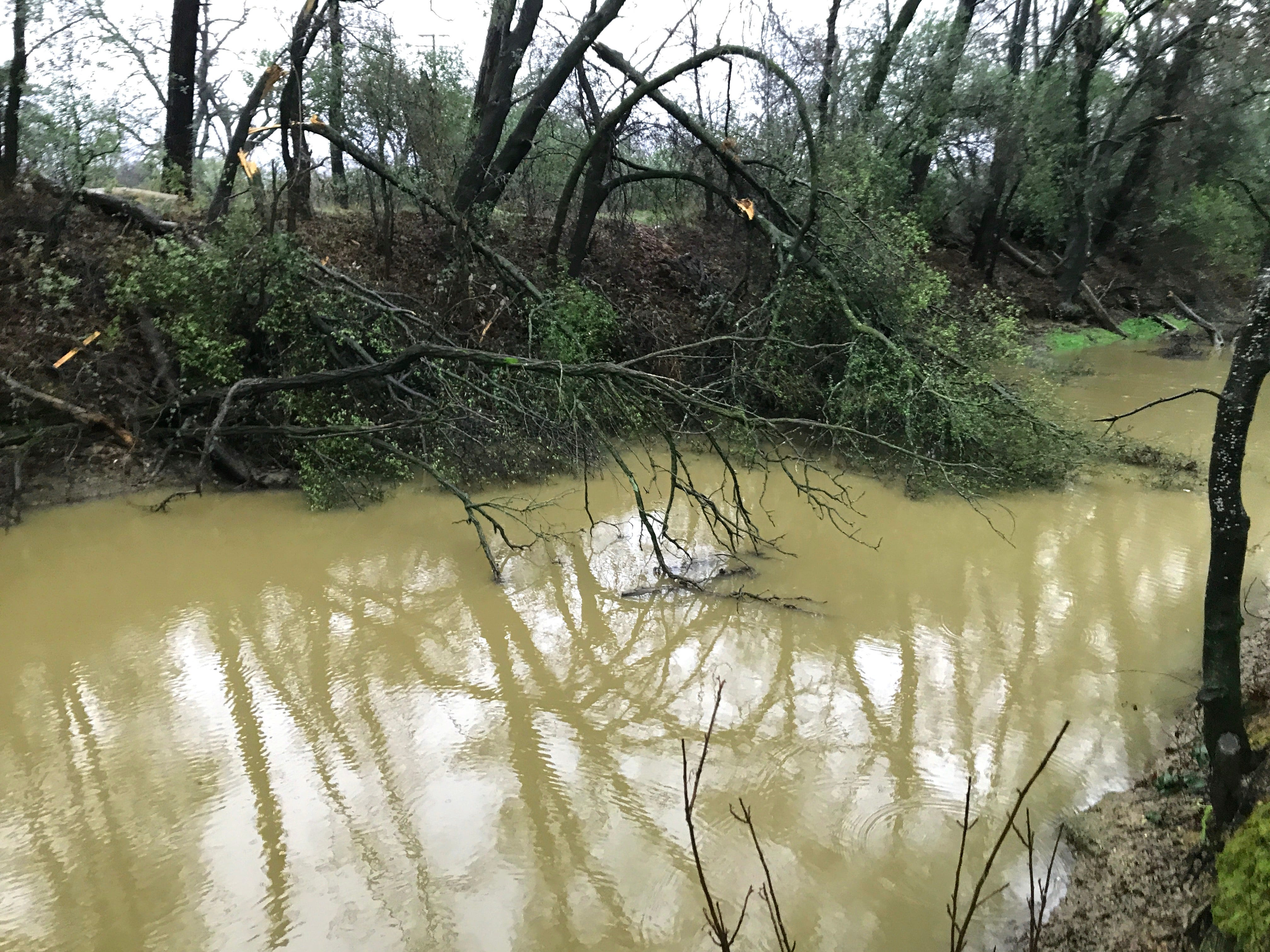 The water was running high in the Anderson-Cottonwood Irrigation Canal near Acorn Lane in south Redding during a rainstorm Feb. 27, 2019.