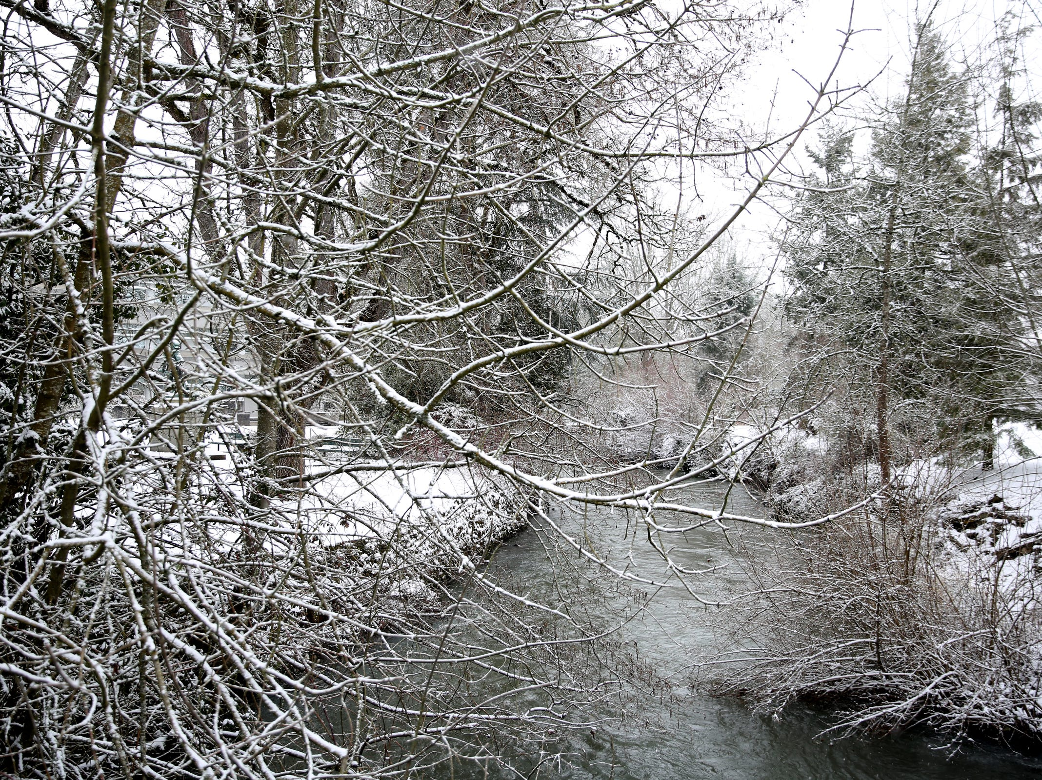 Snow falls over Mill Creek in Salem on Wednesday, Feb. 27, 2019.