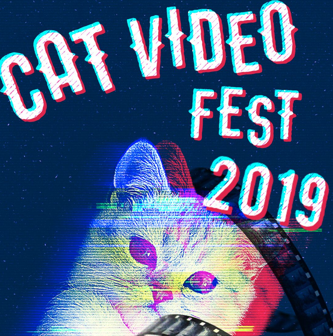 CatVideoFest makes stop at Waite Park theater to raise money for local cats