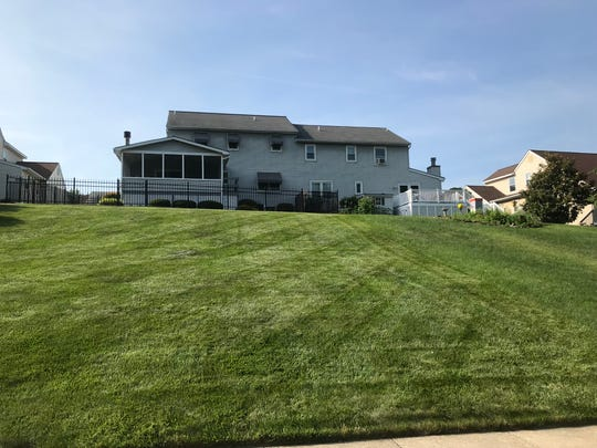 This suburban back yard has a neat mowed back yard that won't contribute as much to Delaware's ecosystem as communities of plants do.