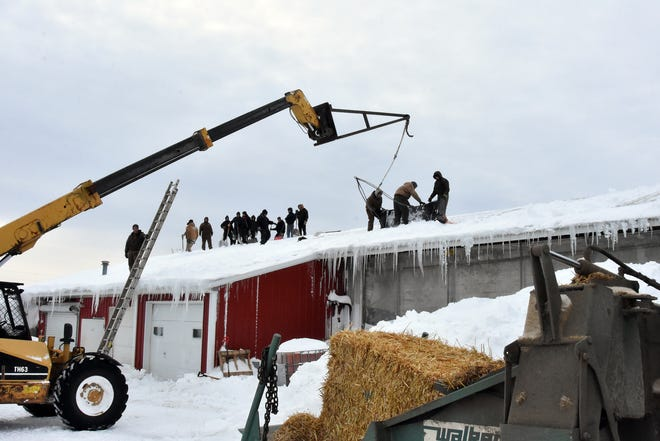 Volunteers with shovels and a giant scraper help clear a roof at Dutch Dairy following a roof collapse on Feb. 24.