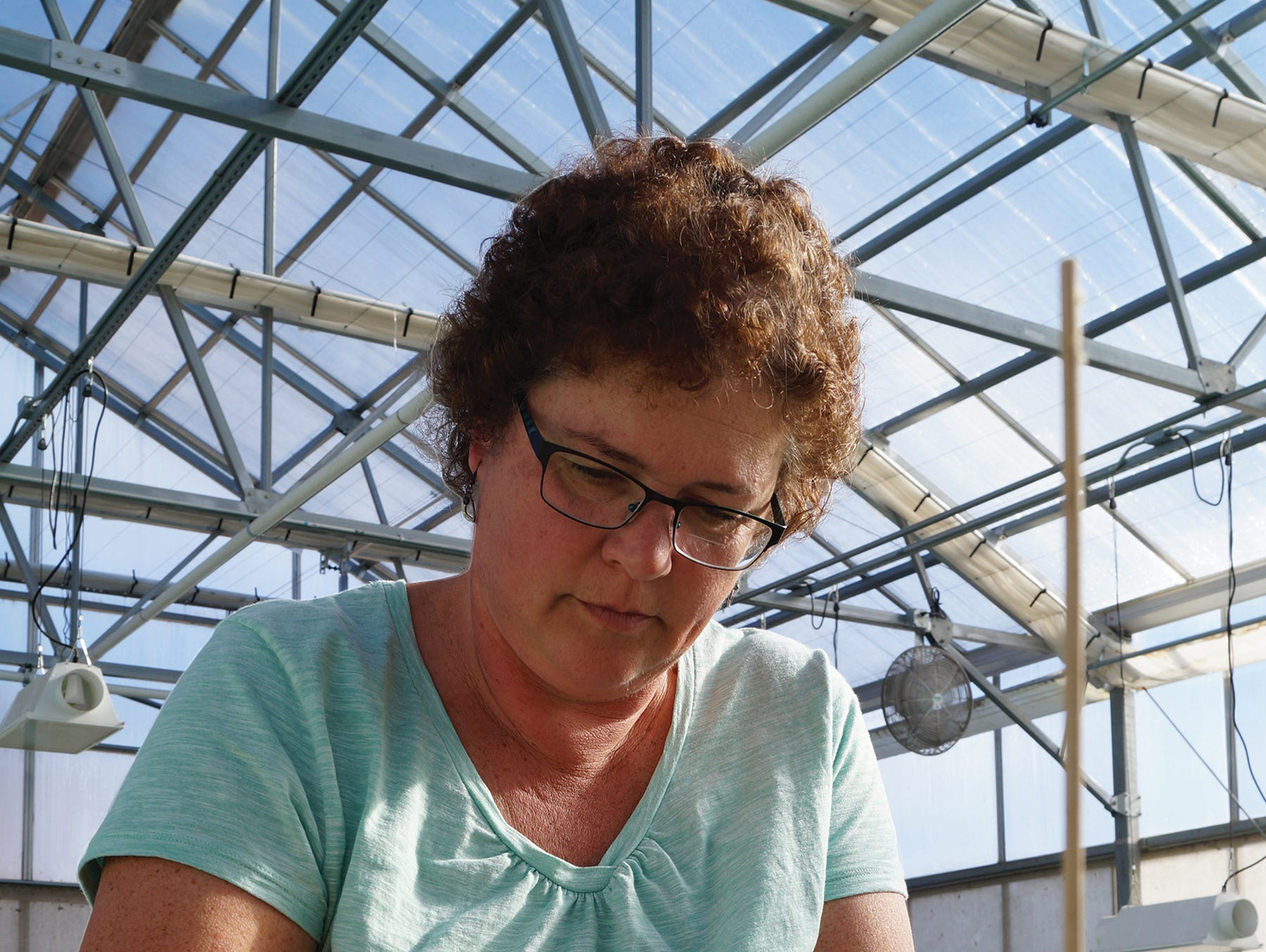 Lois Demmin has worked for Lake Orchard Farm since 2011. She works in the greenhouse and jokingly calls herself the plant relocation specialist.