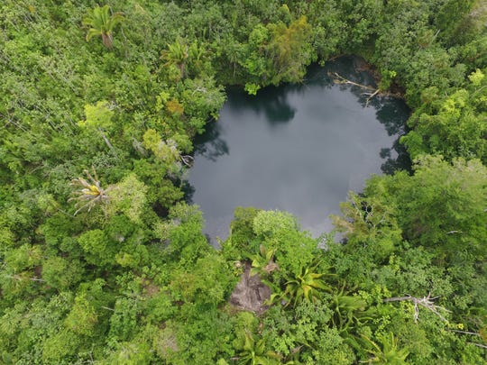 The fossils were discovered in this water-filled sinkhole in Belize.