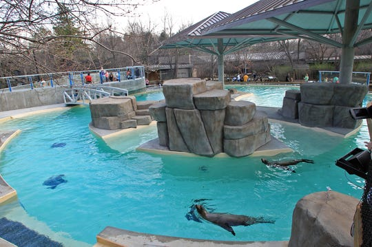 Blank Park Zoo opened a $1.3 million seal and sea lion pool that offers underwater viewing, an overlook into the pool, a redesigned island and two shade structures in 2012.