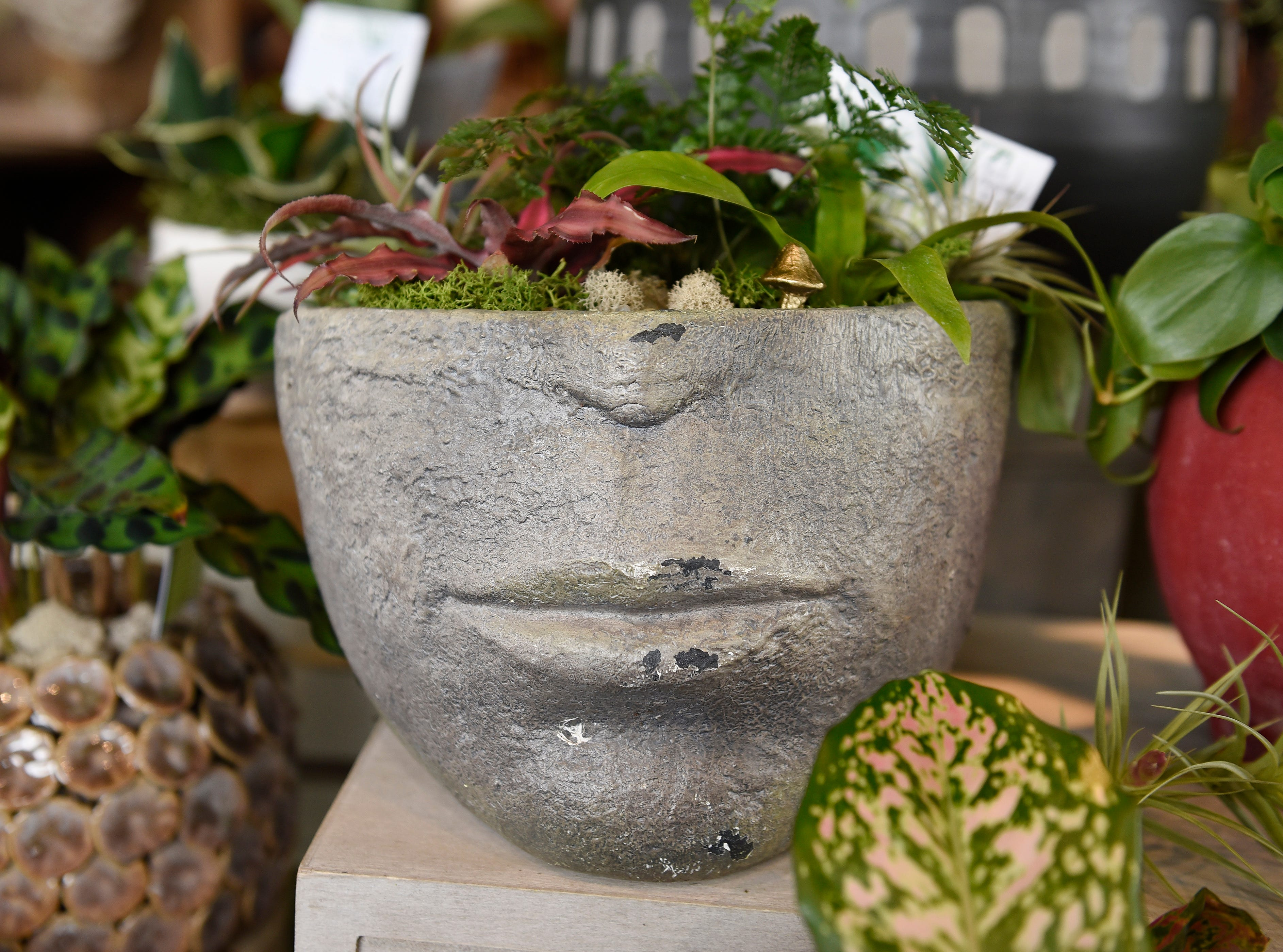 Planters at Southern Green range from $16 to $99.