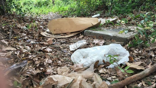 Plastic bags are a major component of litter. This bag was lying on the ground near Capital City Stadium in Columbia in April 2018.
