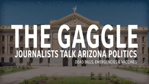 Dead bills, Trump's emergency and vaccine legislation - The Gaggle