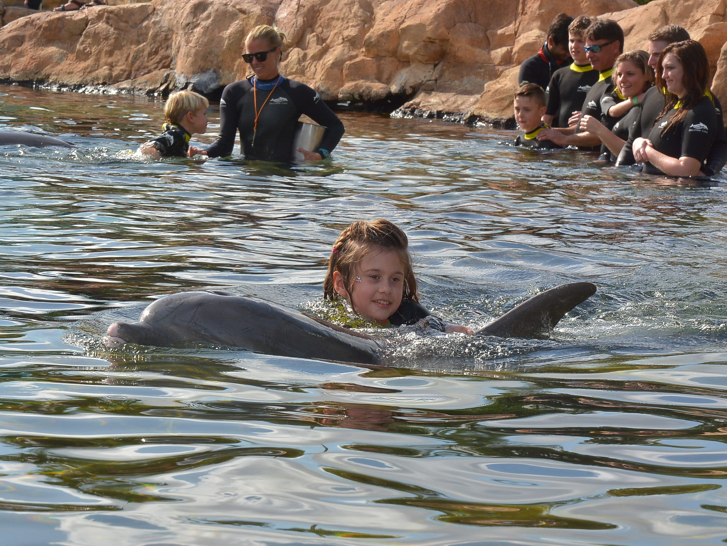 Haley Pollman of Salem swims with a dolphin last December at Discovery Cove in Orlando, Florida.