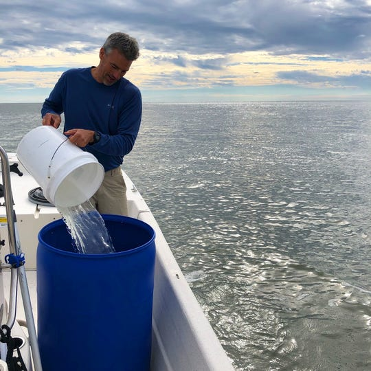 David Lee pours sea water collected by boat off Cobb's Island, Virginia into a large container.