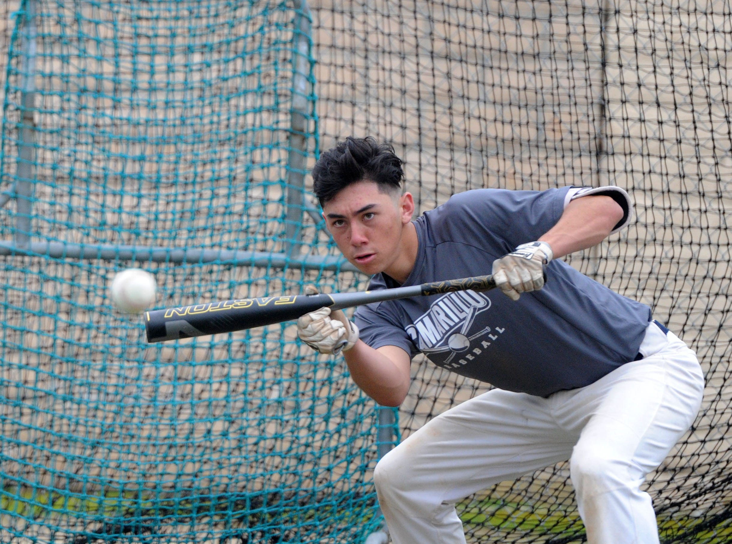 Kaden Tsuji practices his bunting at Camarillo High's practice on Wednesday.