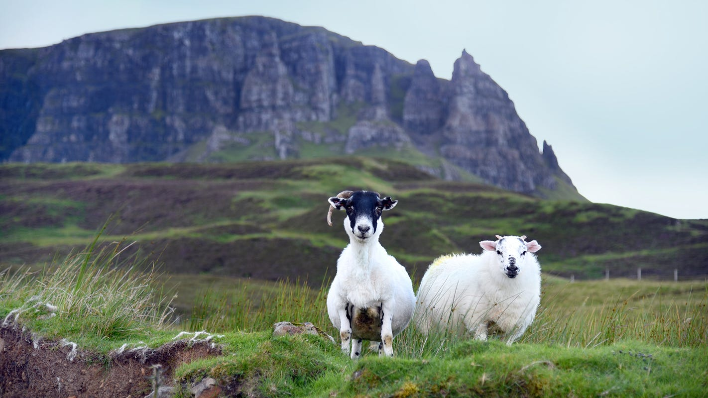 Rick Steves: The majestic Isle of Skye is home to Scotland's most dramatic scenery