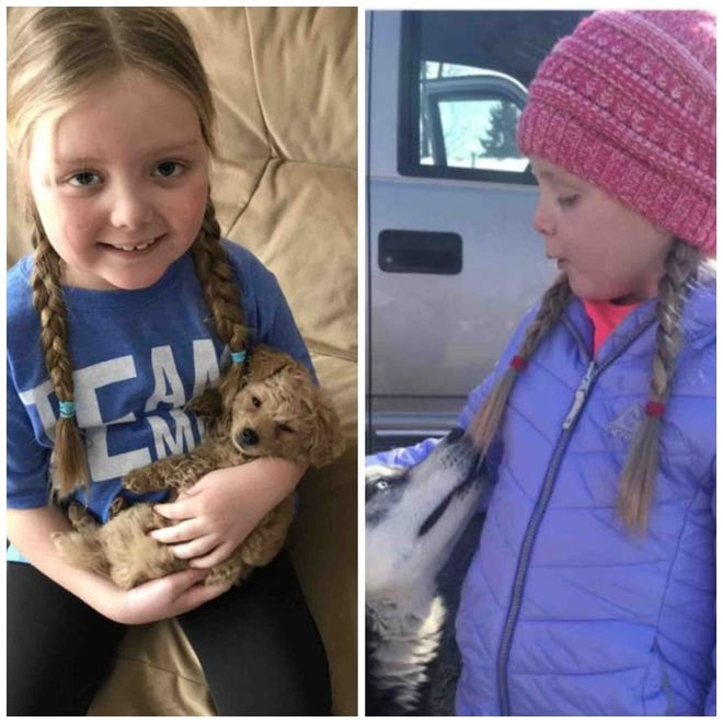 Emma Mertens, a 7-year-old fighting brain cancer, wanted dogs to send loving messages to her and they did - from around the world.