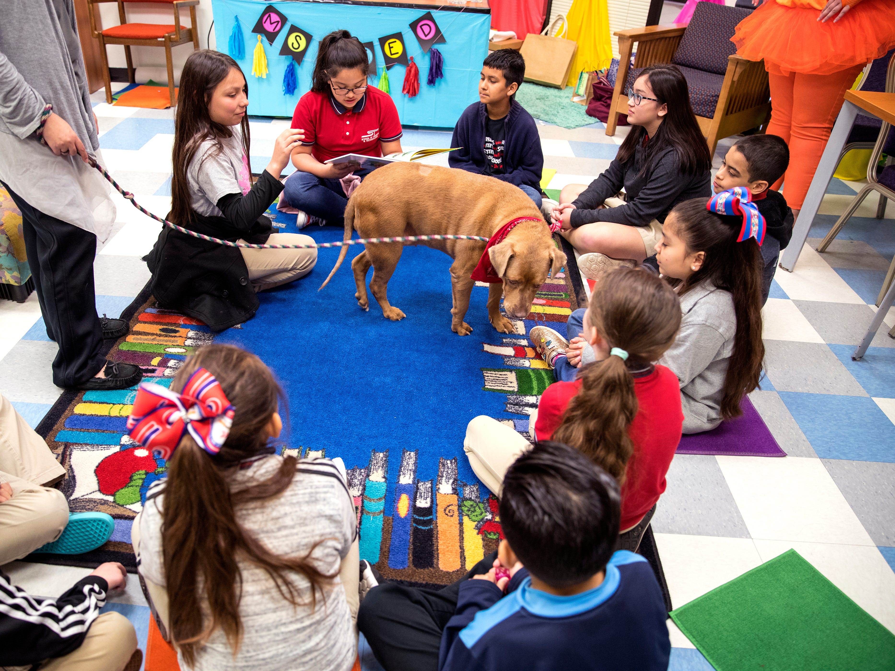 School of Science and Technology students read to Paige, a dog from the Gulf Coast Humane Society during a Dr. Seuss's Birthday and Read Across America event on Friday, March 1, 2019.