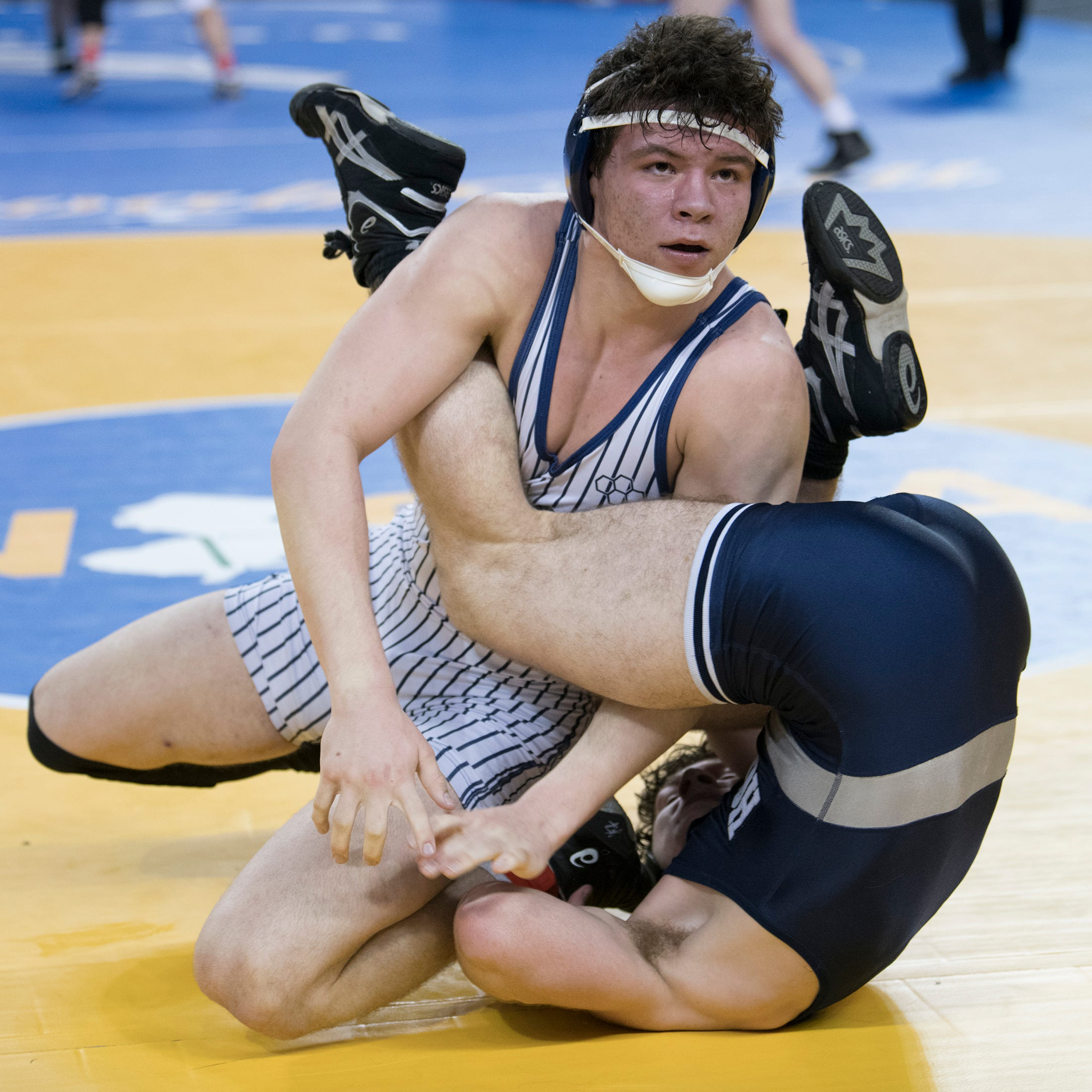 High School wrestling: All-Daily Journal Team for 2018-19