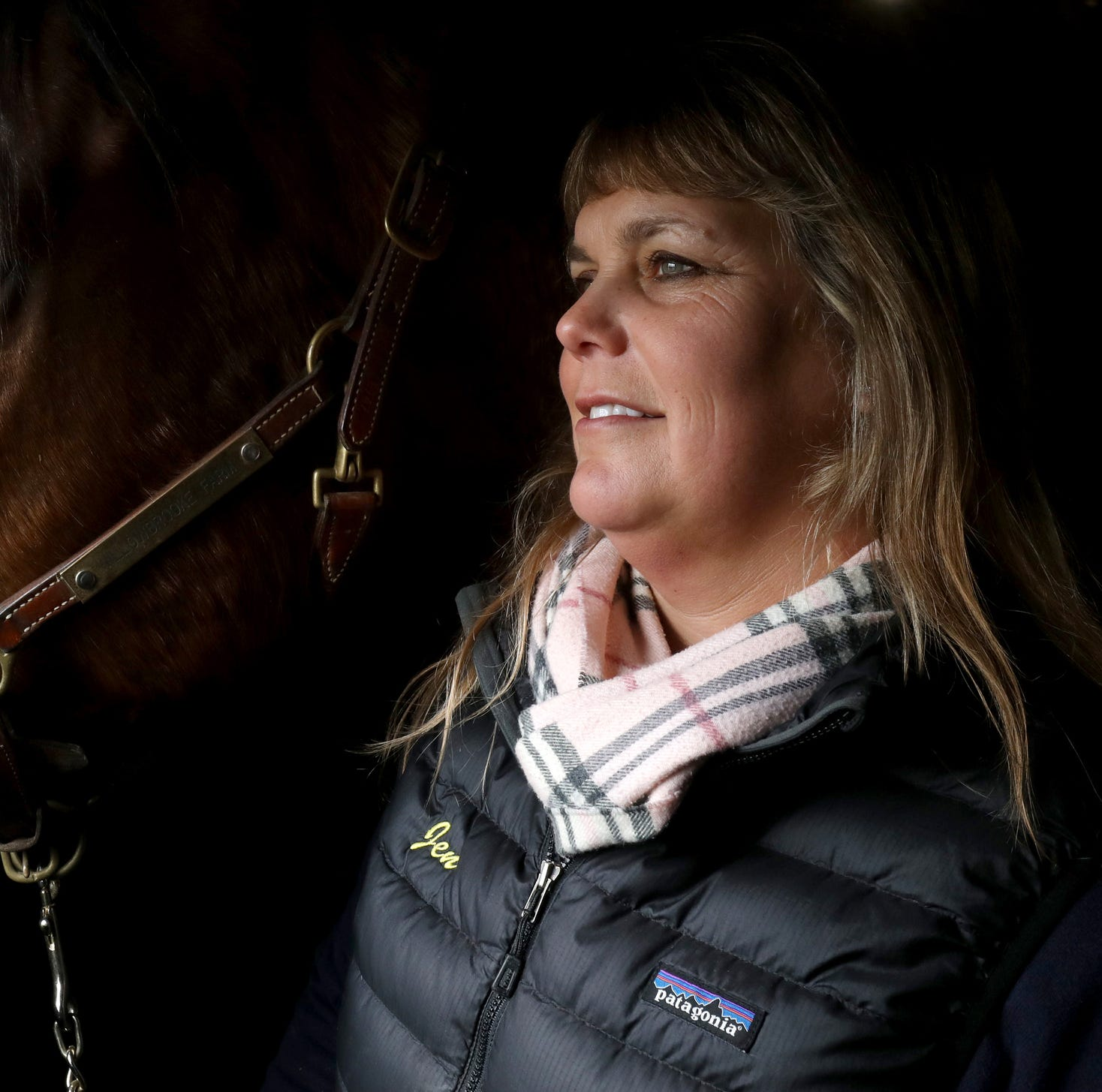 Losing racehorses get a second chance at life with Canter Michigan