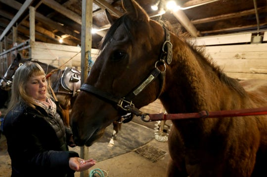 Jennifer Blades, the owner and operator of Willowbrooke Farms in Plymouth, gives a treat to Warrior Inside, a former race horse on Tuesday, February 5, 2019.