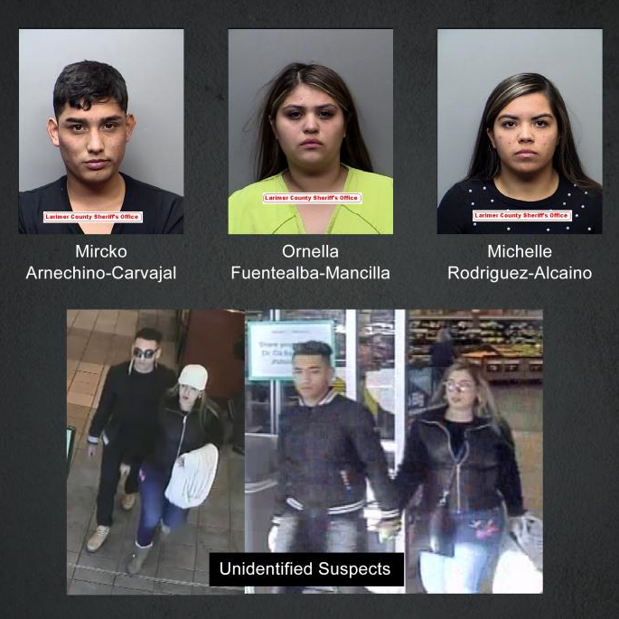 Police: 8 arrested in connection with credit card thefts at natural areas, restaurants in Fort Collins