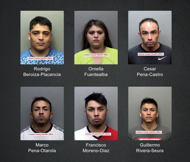 Fort Collins police arrested six people on suspicion of breaking in to several vehicles parked at natural areas and parks.