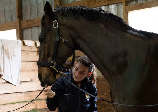 Sammi Messamer cleans her horse, Finn, at Riverbend Equestrian Park Thursday, Feb. 28, 2019.