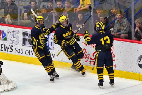 Joey Larson (left) and Owen Pietila (center) celebrate the second goal of the game by Dakota Kott (13) in Hartland's 8-0 victory over Saginaw Swan Valley on Thursday, Feb. 28, 2019.