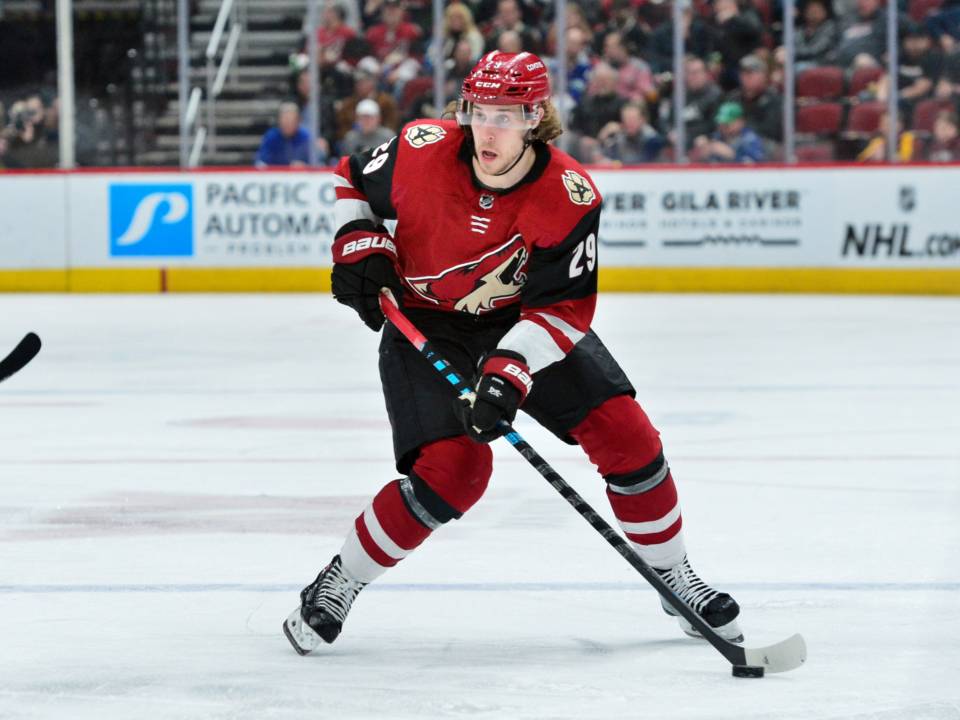 Feb 28, 2019; Glendale, AZ, USA; Arizona Coyotes right wing Mario Kempe (29) skates with the puck during the second period against the Vancouver Canucks at Gila River Arena.