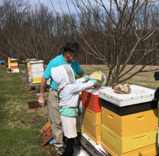 Junior scientists visit Jeremy Barnes' apiary on a tour (Photo courtesy of Jeremy Barnes).