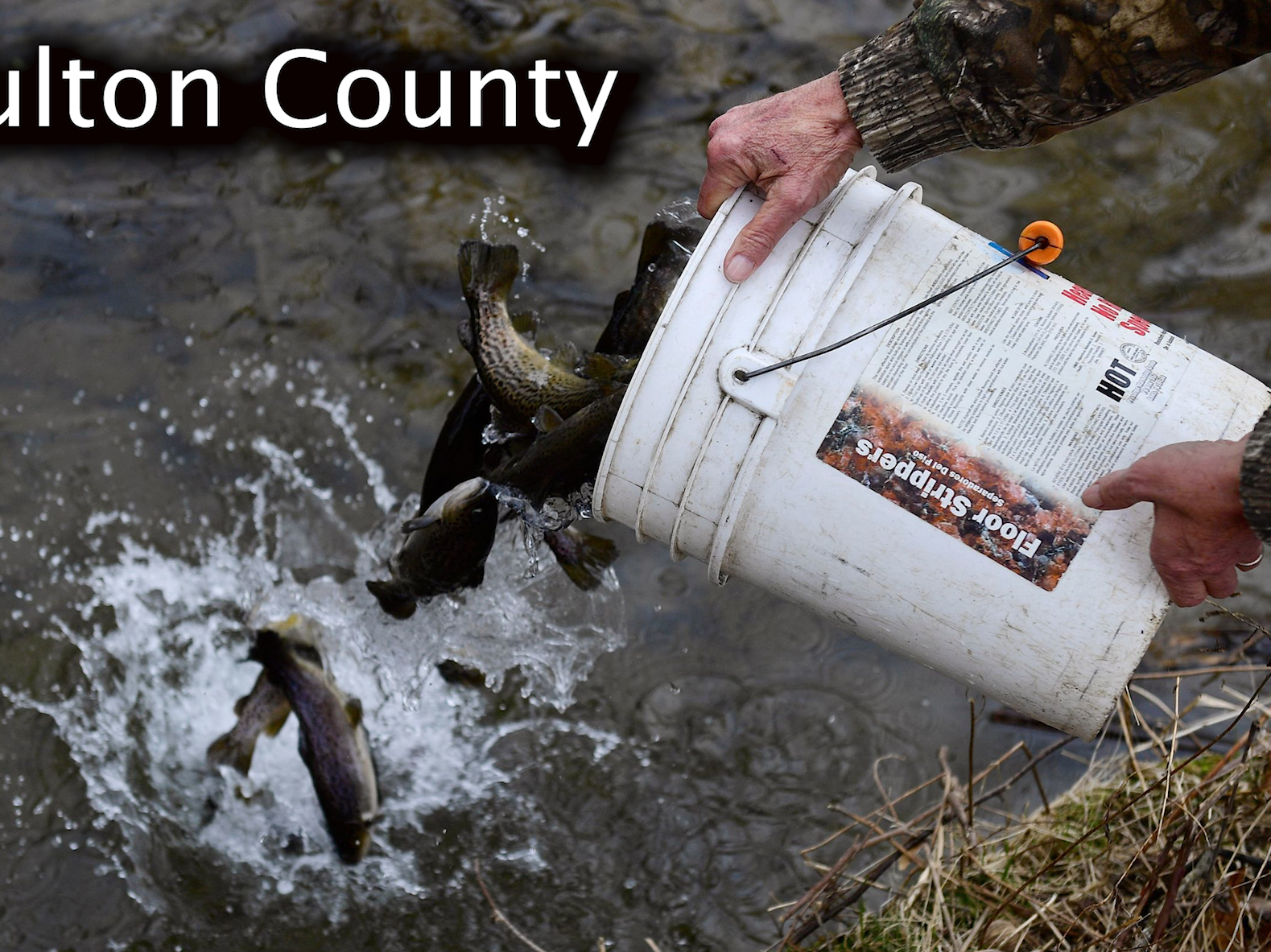 Fulton County trout stocking schedule