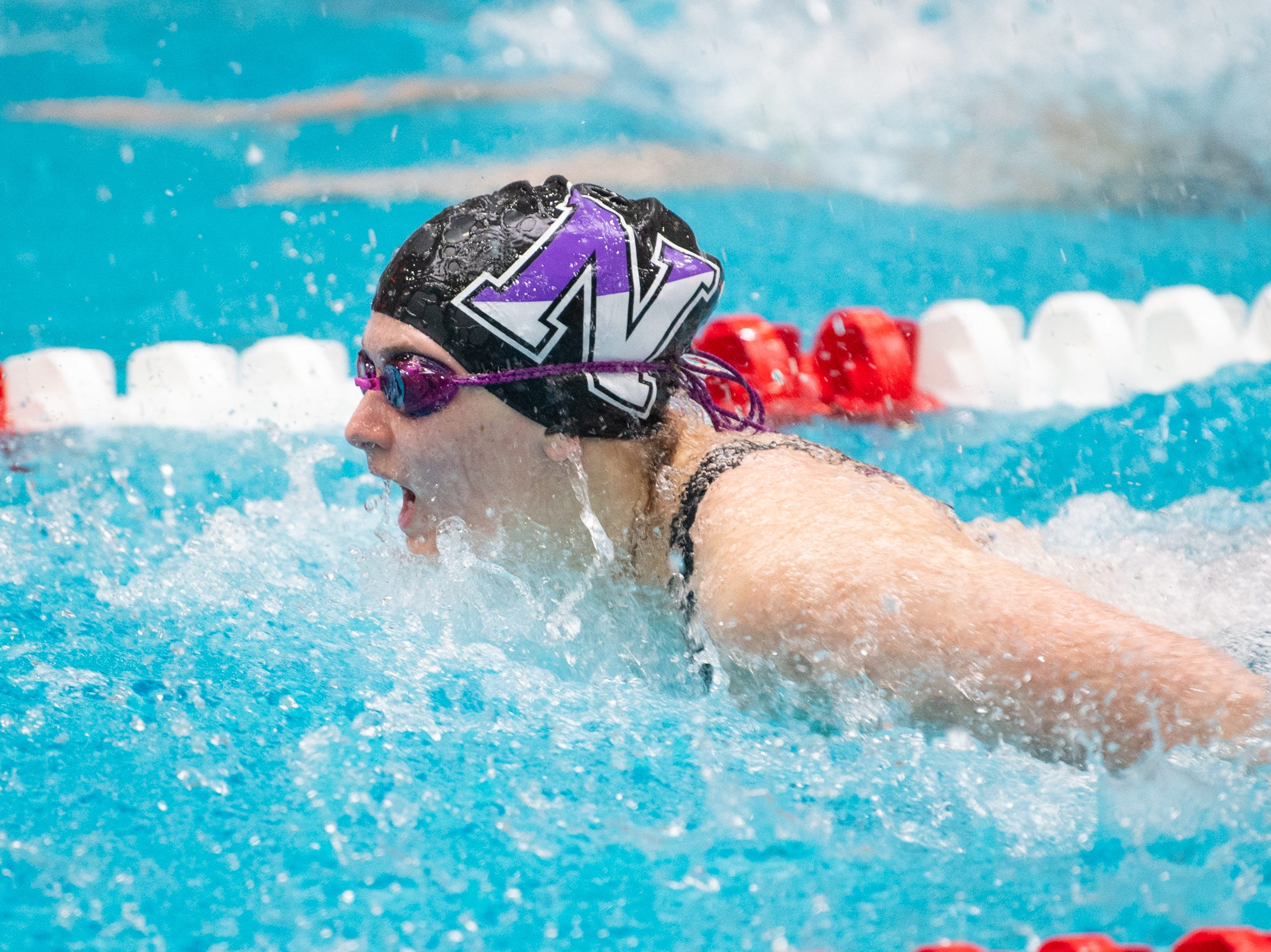 Northern's Mary Secord competes in the Girls 100 Yard Butterfly during the PIAA District 3 Girls AA Championship, March 1, 2019 at Cumberland Valley High School.