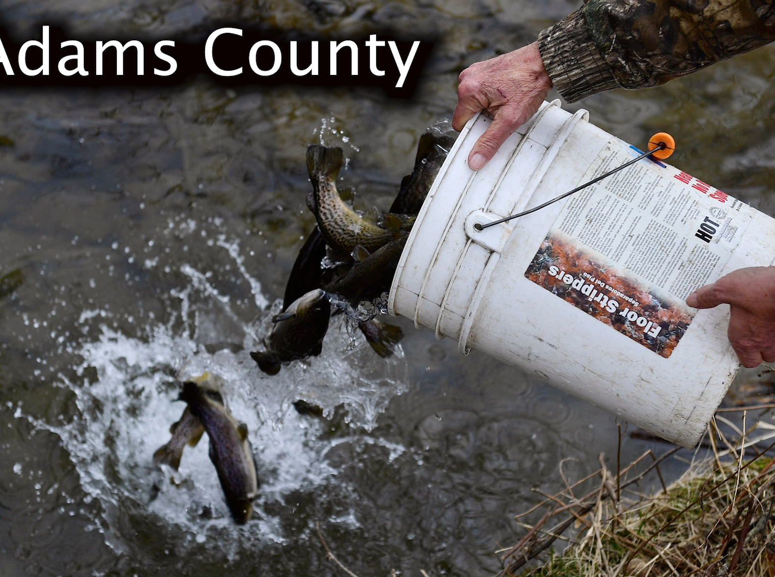 Adams County trout stocking schedule