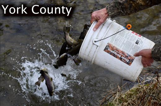 Pa  trout fishing 2019 season: Quick guide to dates, limits