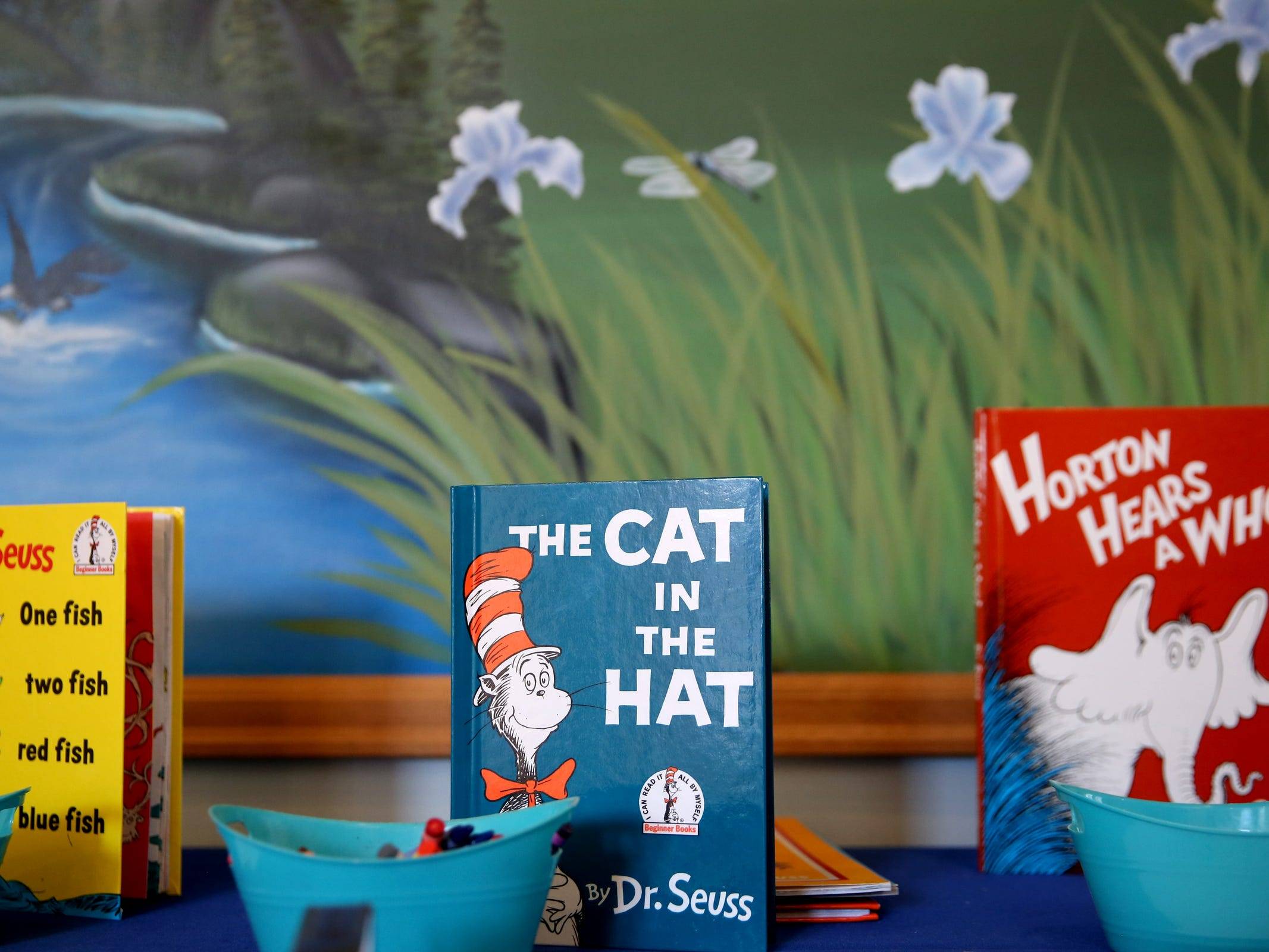 Books are set up as part of a National Read Across America Day activity in honor of Dr. Seuss' birthday at Gilbert House Children's Museum in Salem  on Friday, March 1, 2019.